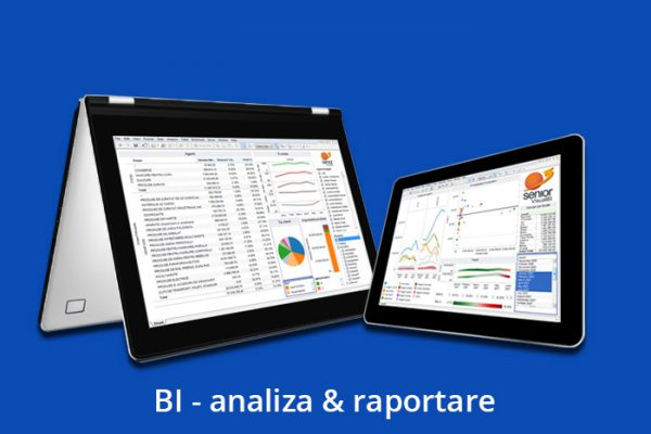 BI – analiza & raportare
