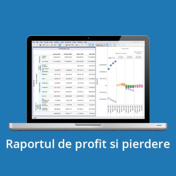 Business Intelligence - Raportul de profit si pierdere