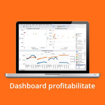 Business Intelligence - Dashboard profitabilitate