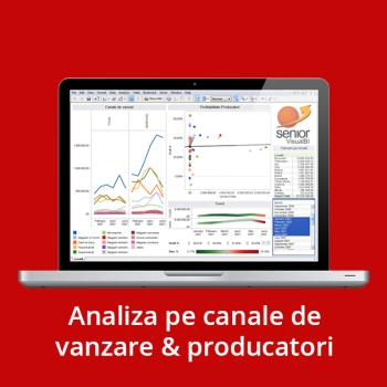 Business Intelligence - Analiza pe canale de vanzare & producatori