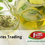 fares trading portofoliu de clienti