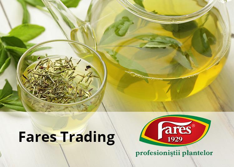 Fares Trading