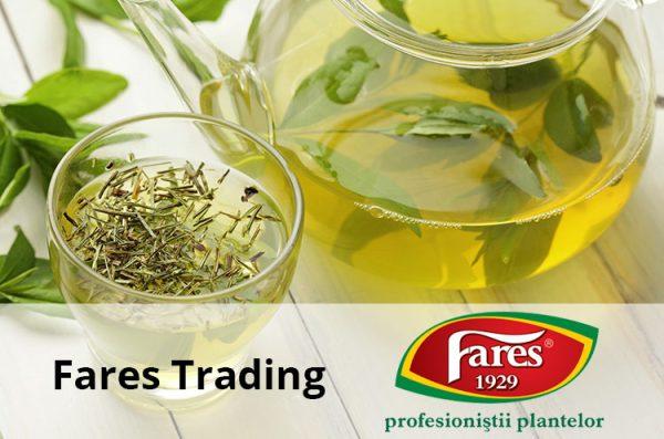 fares trading preview pagina