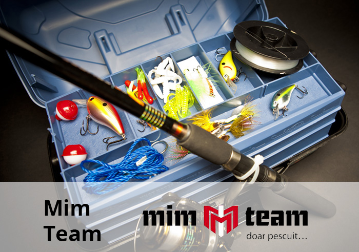 mim team preview pagina