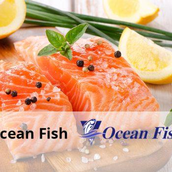 ocean fish clienti v1