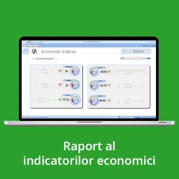 Raport al indicatorilor economici