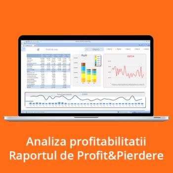 Analiza profitabilitatii - Raportul de Profit&Pierdere