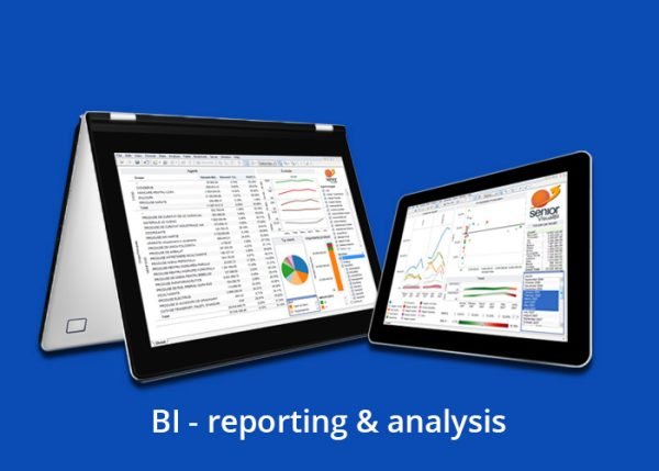 BI – reporting & analysis