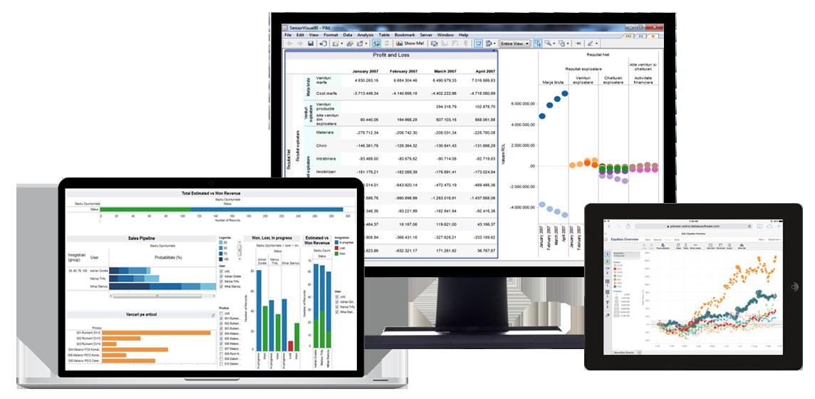 Software Business Intelligence