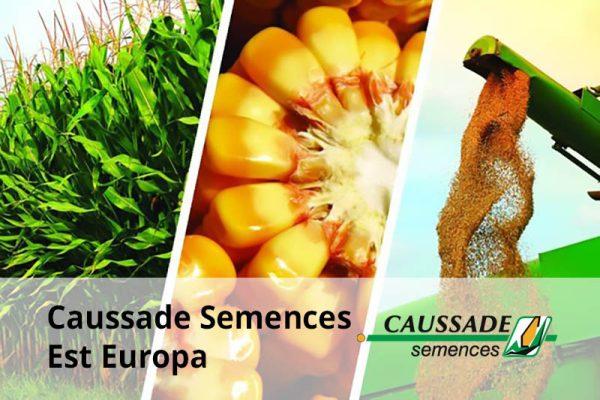 Caussade Semences Est Europa