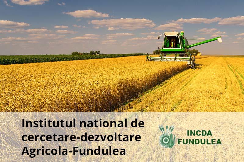 INSTITUTUL NATIONAL DE CERCETARE-DEZVOLTARE AGRICOLA-FUNDULEA imagine reprezentativa