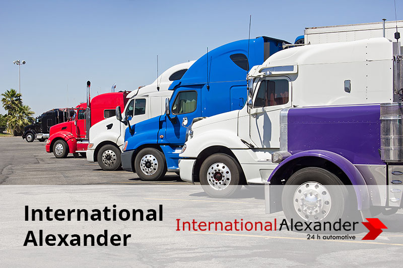 international alexander imagine reprezentativa