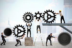 sistemelor de management