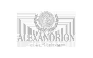 alexandrion grup client wms logo