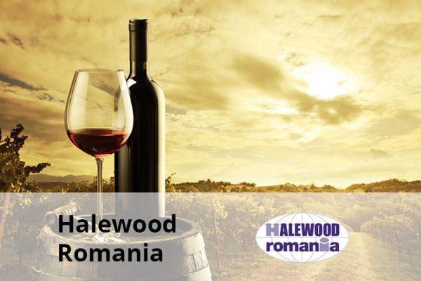 Halewood Romania