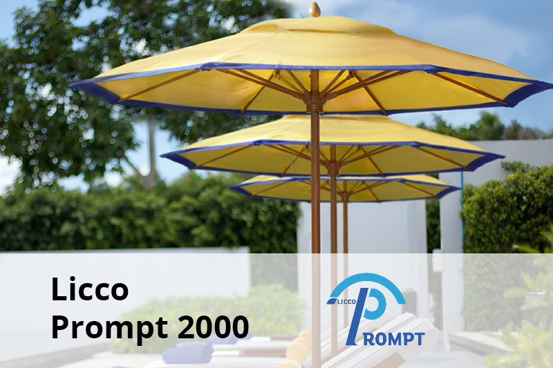 Licco Prompt 2000 senior software