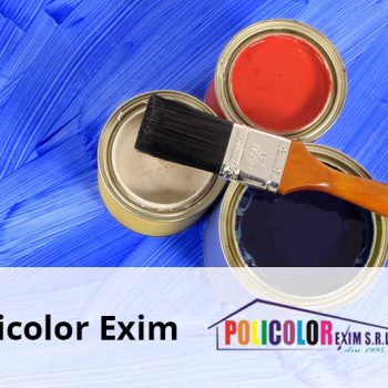 Policolor Exim senior software