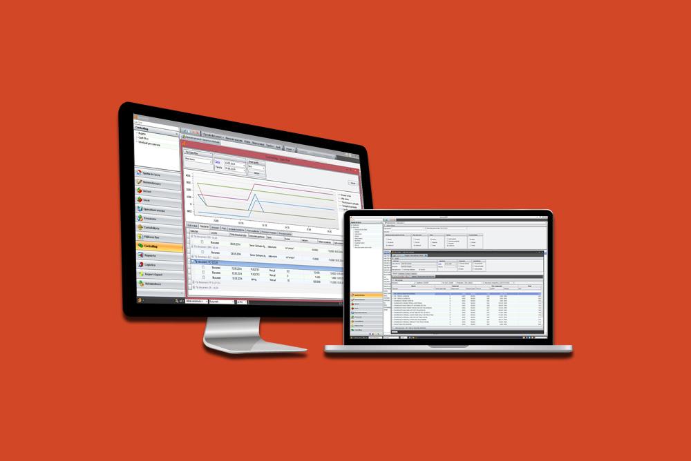 ERP – managementul resurselor intreprinderii