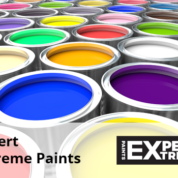 Expert Extreme Paints
