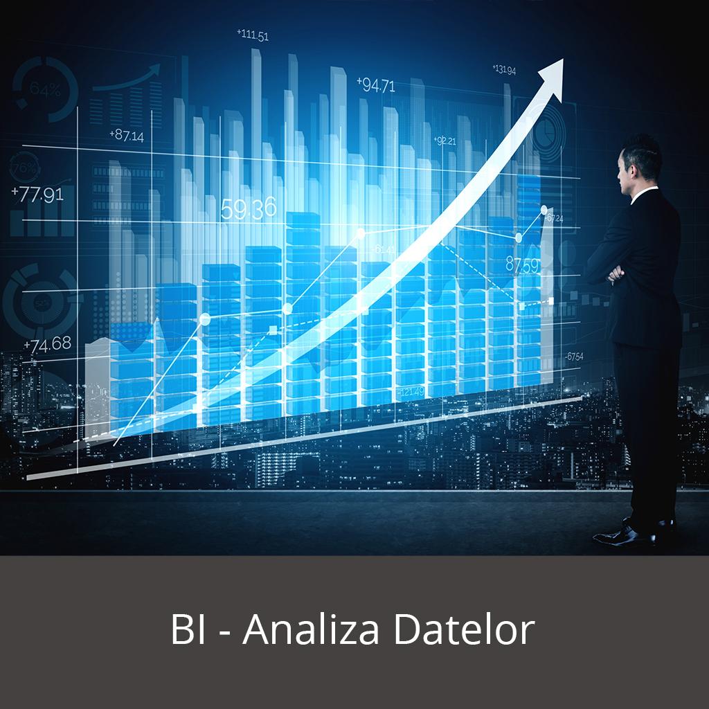 BI - analiza datelor