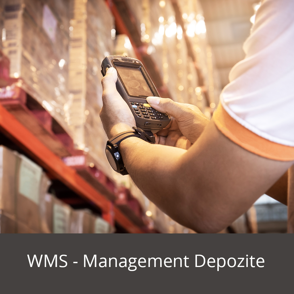WMS - management depozite