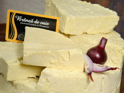 interviu laktotrio erp ecommerce produse traditionale