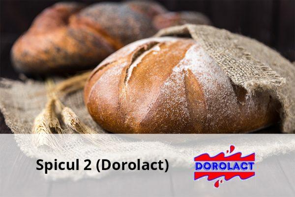 spicul-dorolact-1