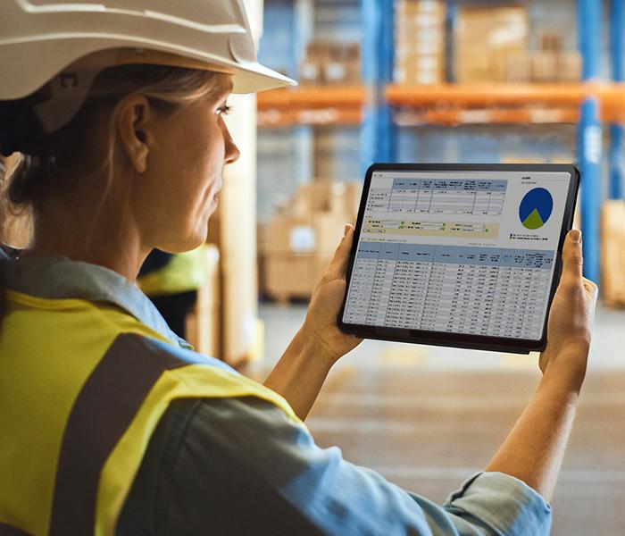 Inventory - Inventory Management - Managementul Stocurilor sistem productie producatori
