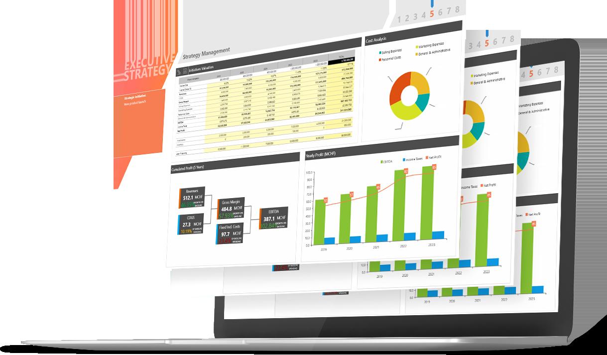 soft-bugetare-cpm-bpm-performance-management-ss-2+4